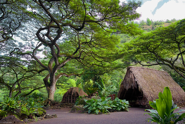 Lost on Oahu